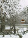 林道湯の原線の樹氷