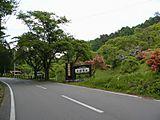 Shidareguri