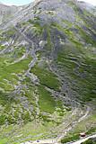 肩の小屋からの登山道(摩利支天岳より)