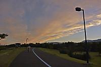 Skyparksep