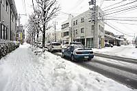 Snowjog