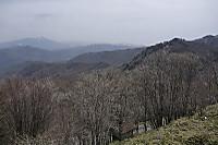 Fromtobira