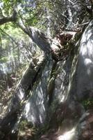 有明山で登山道をロスト