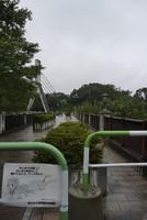 あの花のキービジュアル、旧秩父橋