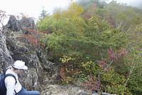 両神山頂の紅葉