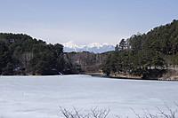 Icemisuzu
