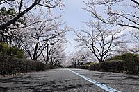 Skyroad4
