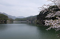 Misuzuko