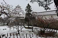 Tsuru_2