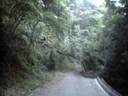 Shinagurakuzure